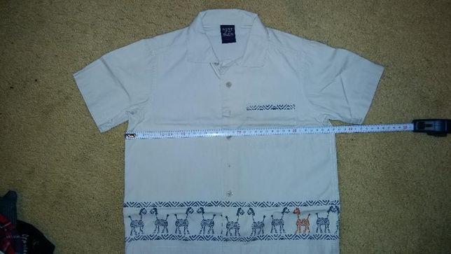 Koszula chłopięca firmy NEXT rozmiar 98 3 lata