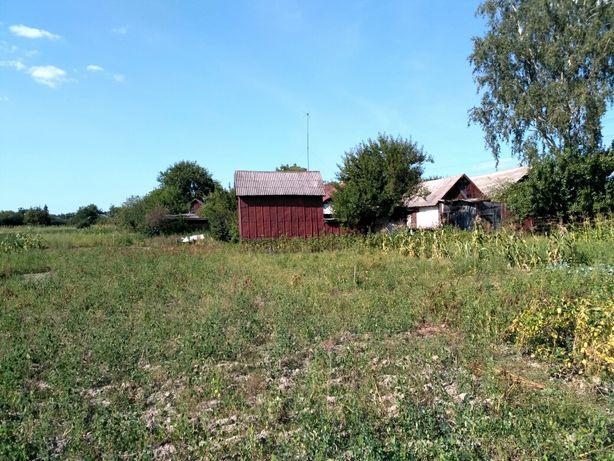 Продам будинок ( Ольшаниця)