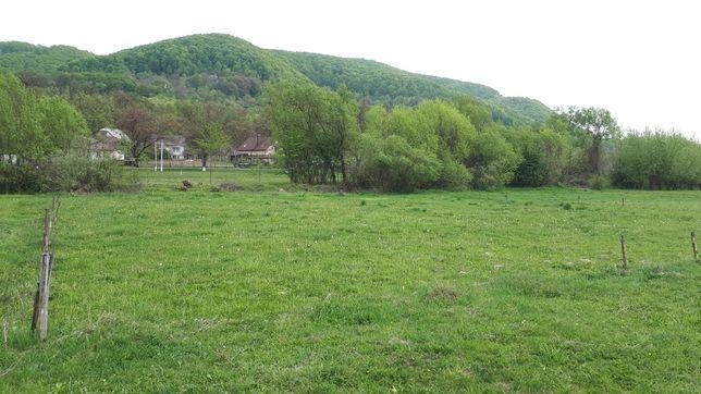 Продається земельна ділянка с.Терново