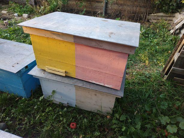 Вулики для бджіл