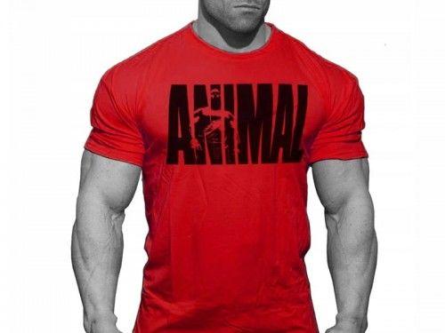 Super Koszulka ANIMAL Czerwony