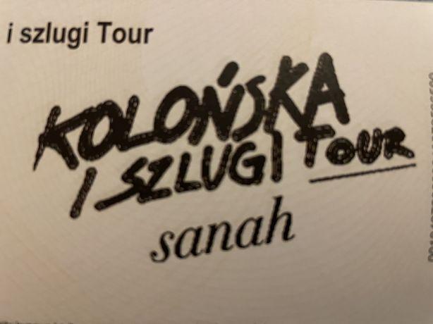 Bilety Sanah Wrocław