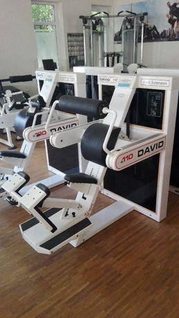 Maszyna Atlas Prostowniki Grzbietu Plecy DAVID 110 Back Extension