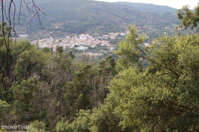 Excelente Quintinha com 15.560 m2, na Serra de Monchique.