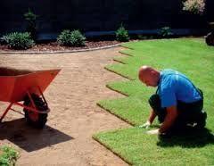 zakładanie trawników,koszenie,wertykulacja,ciecie żywopłotów,serwis og