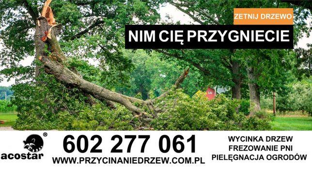 Cięcie i przycinanie drzew Konstantynów Łódź Pabianice Aleksandrów