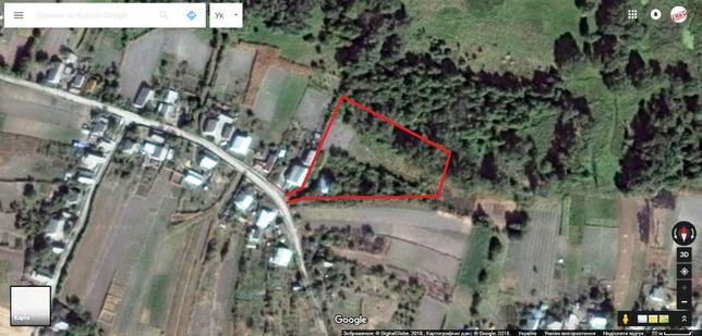 Продам велику земельну ділянку в селі Пищики пiд будiвництво