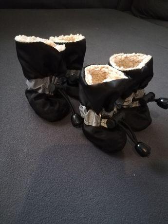 Buty dla małego pieska