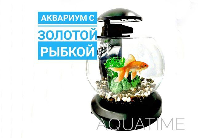 Аквариум с золотой рыбкой - Tetra Cascade Globe | Исполняет желания:)