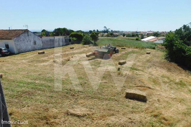 Armazém e actividade industrial com terreno envolvente para construção