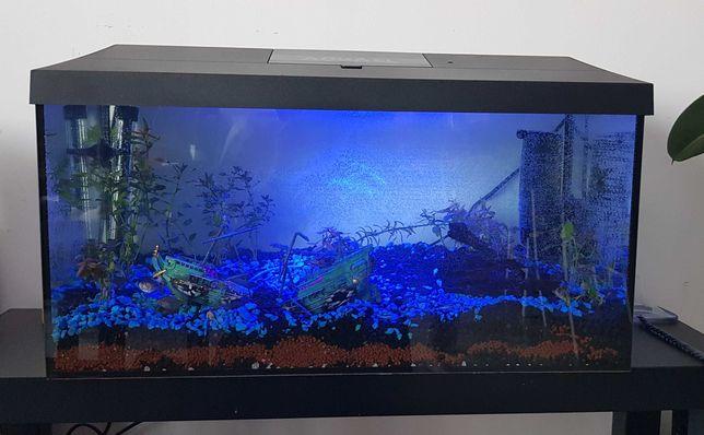 Akwarium Aquael 54l pokrywa dzień/noc LED