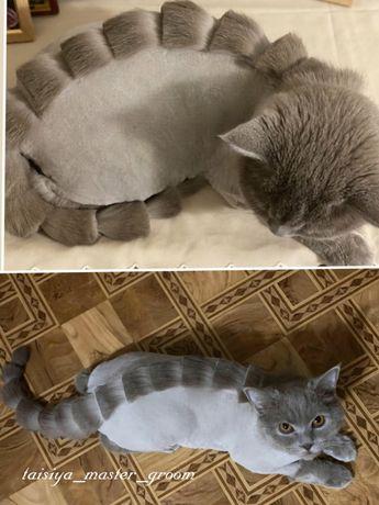 Стрижка котов и собак