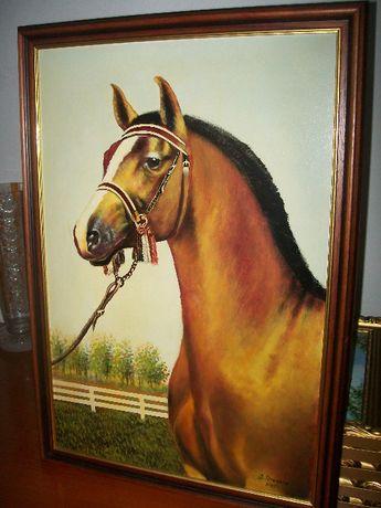 Obraz w ramie - Koń - portret konia