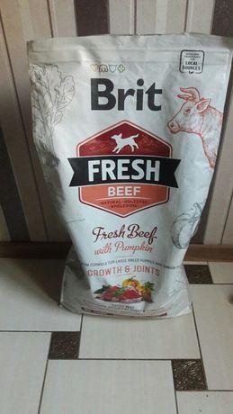 Brit Fresh с говядиной для щенков