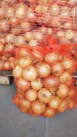 Sprzedam cebule.