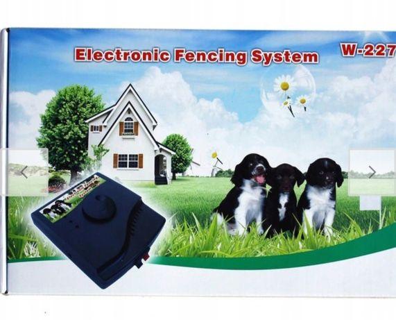 Pasterz dla psa elektryczny