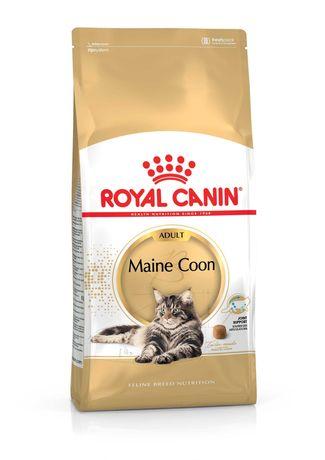Royal Canin Feline Maine Coon \ Gato Maine Coon
