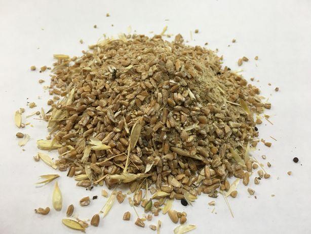 Зерноотход пшеницы