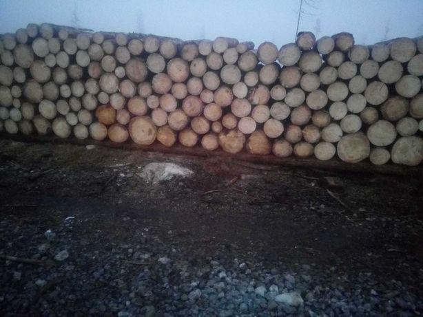 Drewno opałowe swierk
