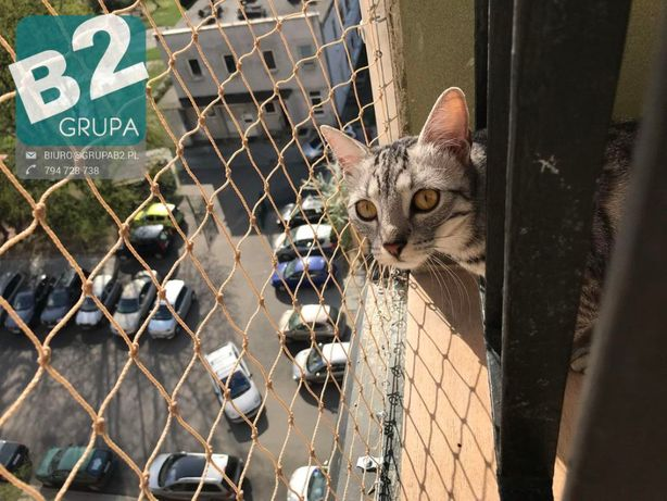 Siatka dla kota, siatka balkonowa, siatka przeciw ptakom na balkon
