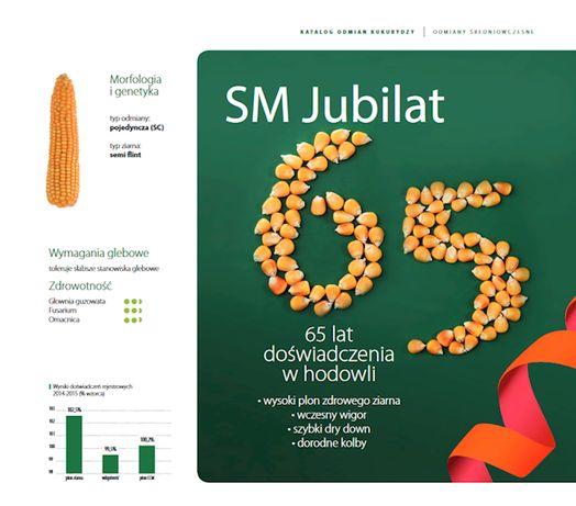 Nasiona kukurydzy Jubilat Tonacja Wiarus Kosmal Ułan kukurydza wysyłka