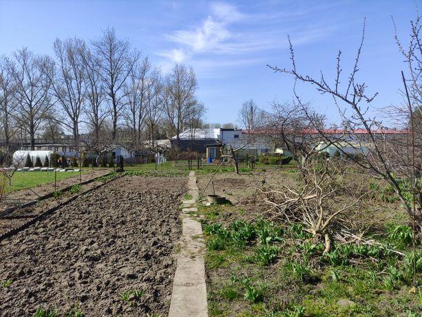 Działka ogrodnicza ROD Aster Koszalin