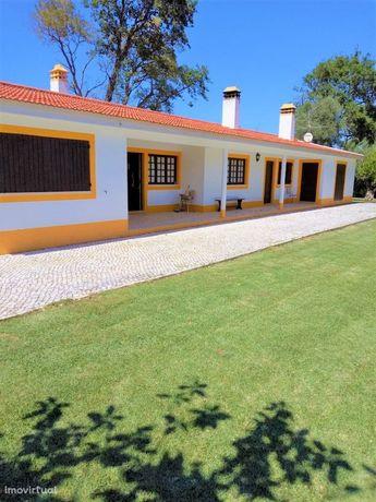 Quinta perto de Montemor-19 hectares
