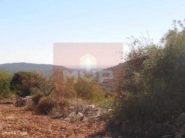 Moradia em ruínas com vista mar e Serra algarvia