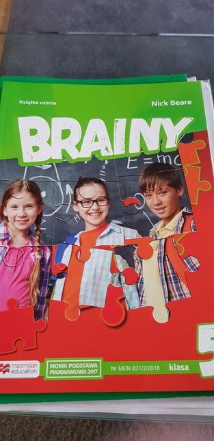 Brainy 5 Książka uczenia