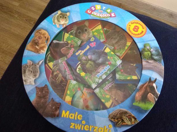 zwierzątka w książce dla dzieci