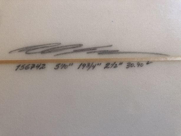 Prancha Polen Arion 5'10