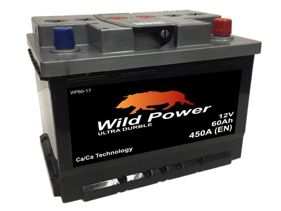 Akumulator Wild Power WP60-17 12V 60Ah 450A P+ D59