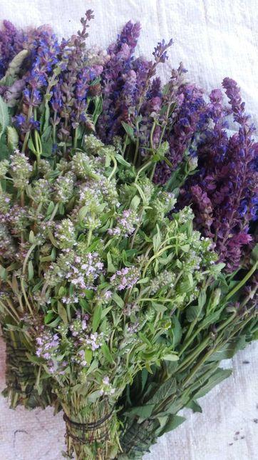 Щирица,яснотка,кипрей и другие травы полный список