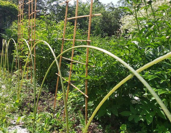 Опоры для растений композитные. Колья для растений. Арматура композит