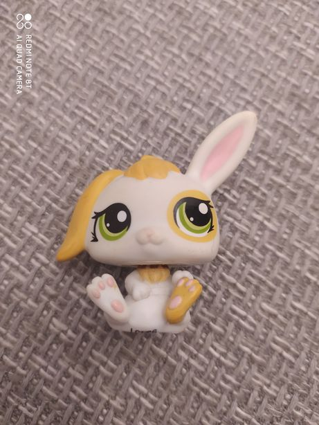 Littlest pet shop królik