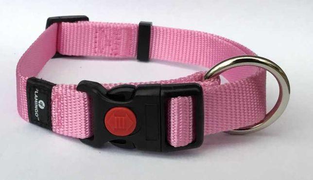 Coleira cor de rosa XS