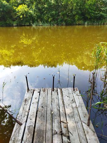 2-ух эт. дом с удобствами с выходом к лесу и реке, с.Ивано-Михайловка