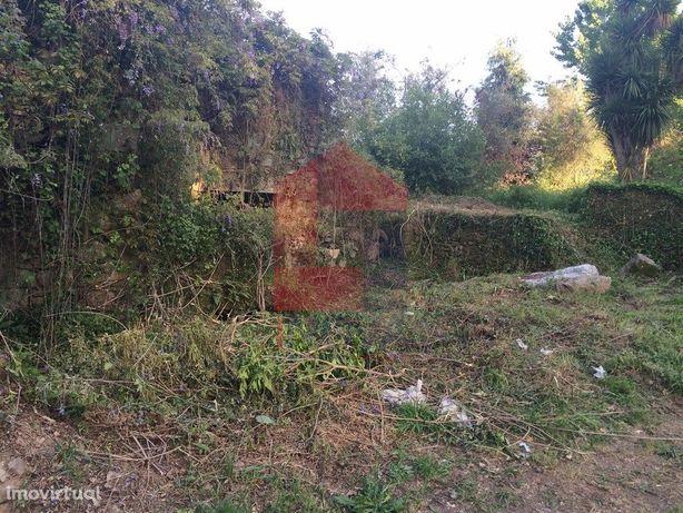 Vende-se Ruina, Carreiras S. Miguel