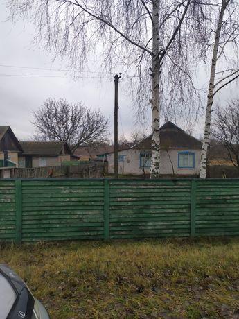 Продається будинок (Прибірськ)
