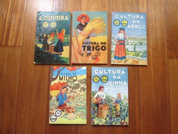 Agricultura - Oliveira - Trigo - Arroz - Milho - Vinha - Livros CUF