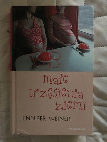 Jennifer Weiner Male trzesienia ziemi