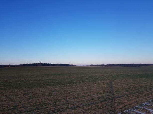 Okolice Gniezna działka rolna 5444 m2 do SPRZEDANIA