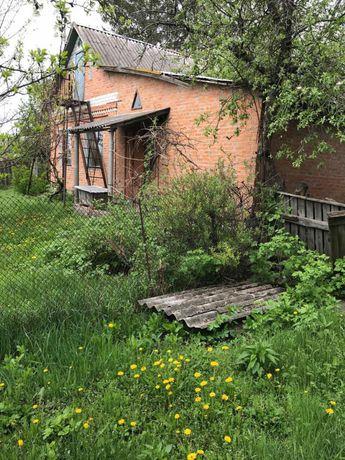 Дом под Миргородом