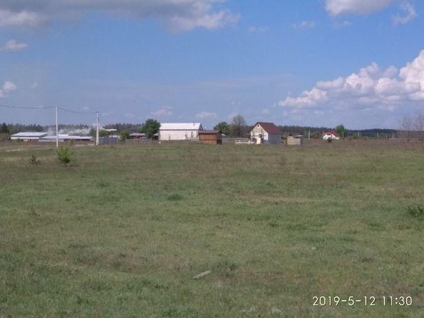 Терміново, 12 соток, 65 км від Києва, Кодра. Власник