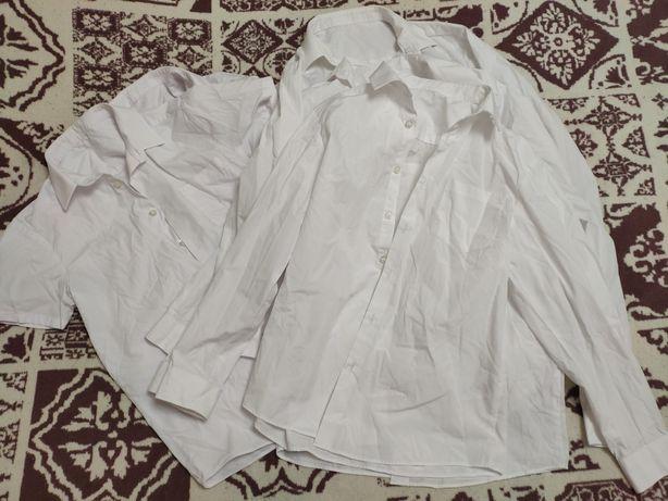 Белые рубашки короткий и длинный рукав
