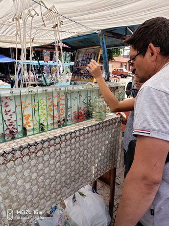 Продажа аквар. рыб, раст. аквариумов
