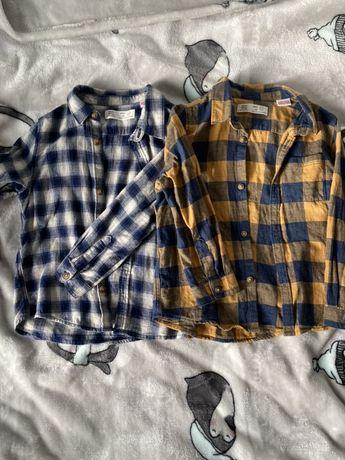 Koszule Zara