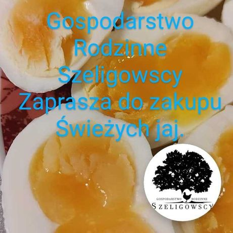 Jajka prosto z kurnika