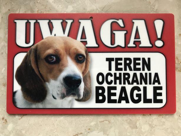 Tabliczka z motywem psa beagle
