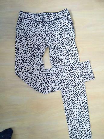 Spodnie na lato XS 34 panterka